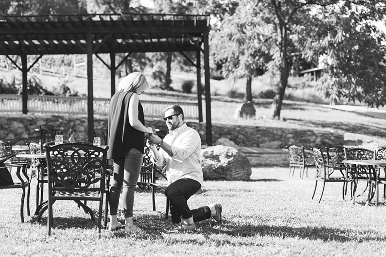 Bluemont Vineyard Proposal Engagement Photography_0004