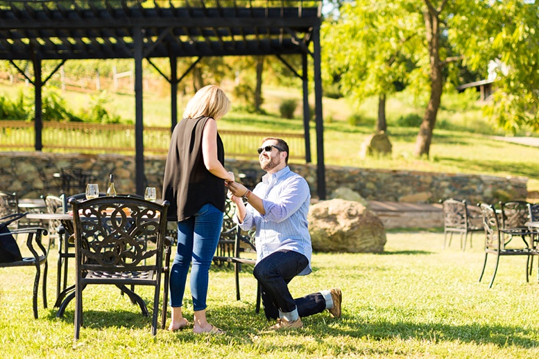 Bluemont Vineyard Proposal Engagement Photography_0005