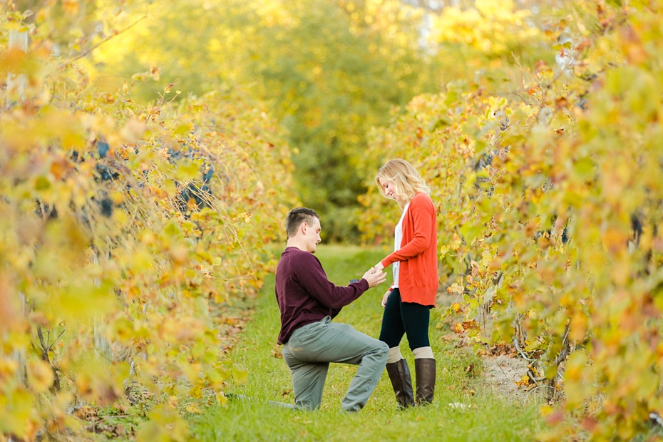 emily-sacra-photography-josh-lydia-fall-proposal-and-engagement-session-at-bluemont-vineyard-in-leesburg-virginia_0003