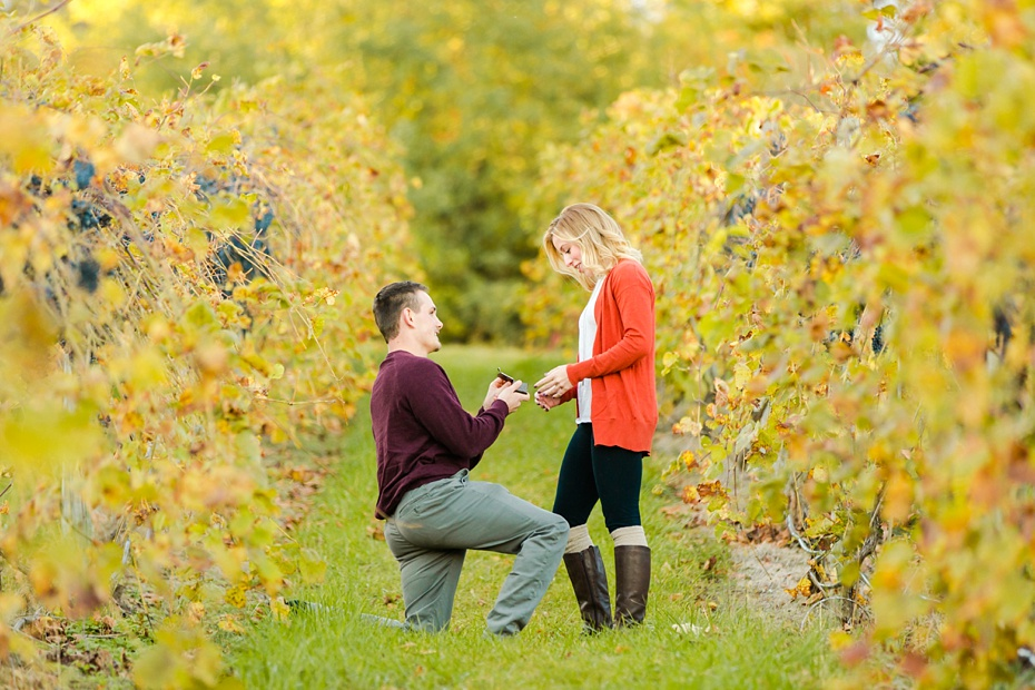 emily-sacra-photography-josh-lydia-fall-proposal-and-engagement-session-at-bluemont-vineyard-in-leesburg-virginia_0004