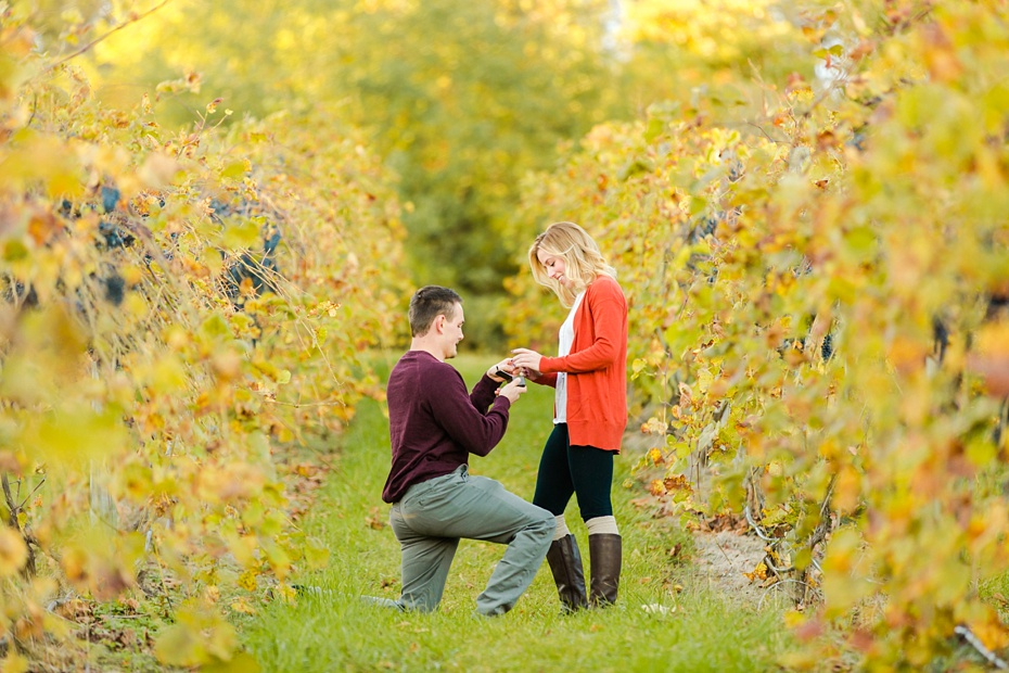 emily-sacra-photography-josh-lydia-fall-proposal-and-engagement-session-at-bluemont-vineyard-in-leesburg-virginia_0005